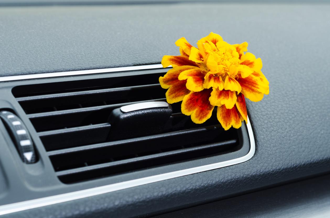 الروائح الكريهة في السيارة